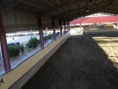 pista cubierta de entrenamiento para caballos