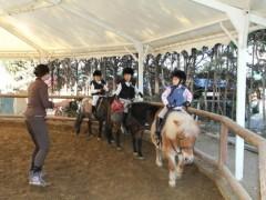 niños montando en pony en open hipica