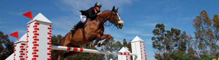 caballo-altando-obstaculo-open-hipica-barcelona