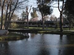 Terraza Jardin con lago artificial Open Hipica